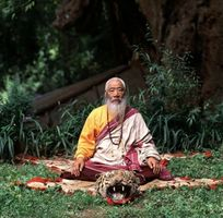 Chatral Rinpoche (tiger skin).jpg